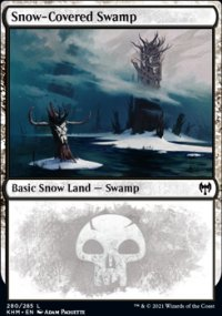 Snow-Covered Swamp 1 - Kaldheim