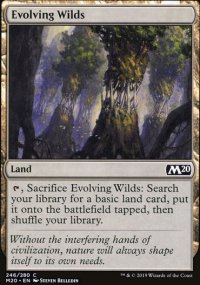 Evolving Wilds - Core Set 2020