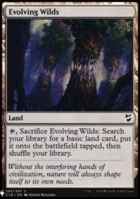 Evolving Wilds - Mystery Booster